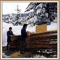 древесина для корпуса часов